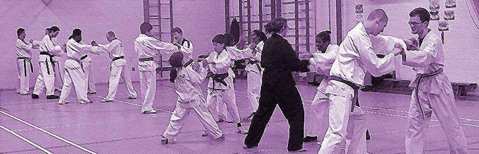 birmingham Taekwondo club prices