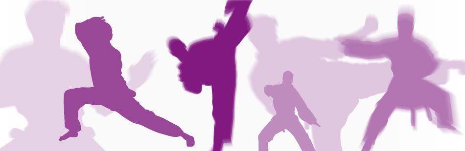 about birmingham Taekwondo club